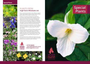 Special plants brochure